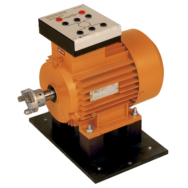 MV1031 Induction Motor